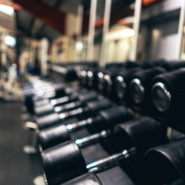 Rangée d'haltères noires entraînement Stronger Experts